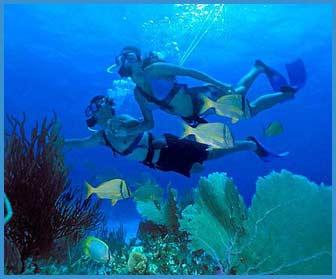 Spanish Phrases to Learn | Liz Moore Destination Weddings |Cancun Mexico Language